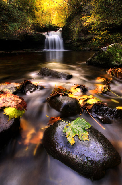 West Burton Falls - Beautiful and Colorful Autumn Leaves Photography