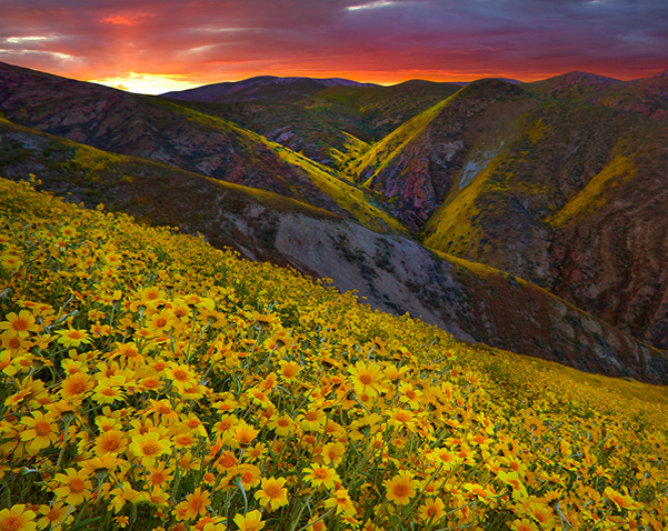 Carrizo Plain Canyon Sunset, California