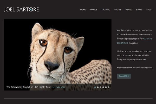 Joel Sartore - 25 Inspiring Portfolio Websites of Wildlife Photographers