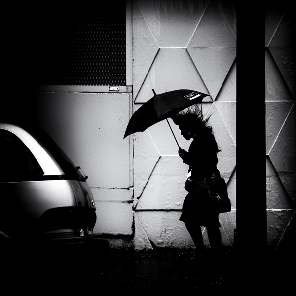 The Mood of Silhouette - Winner and Honorable Mentions