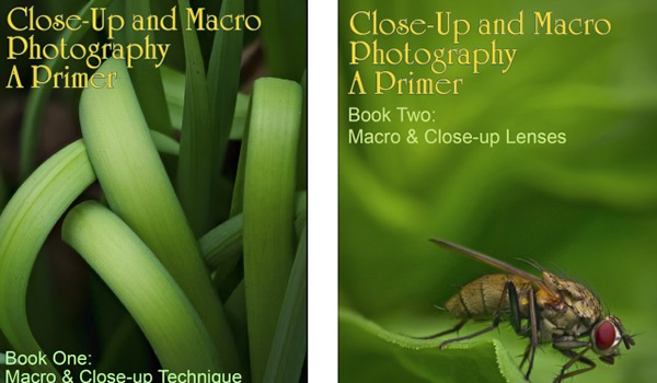 Free eBooks: Close-up Photography and Focus Stacking