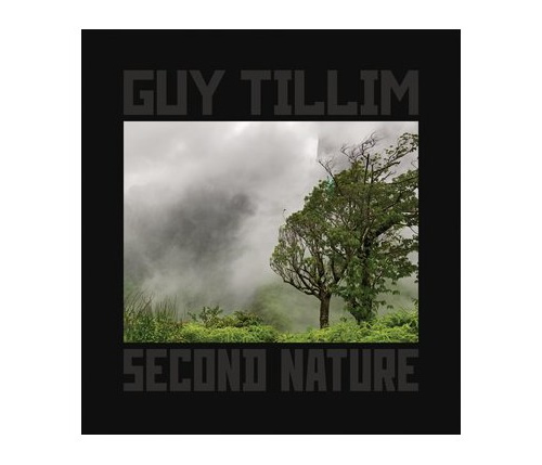 Guy Tillim: Selected Works