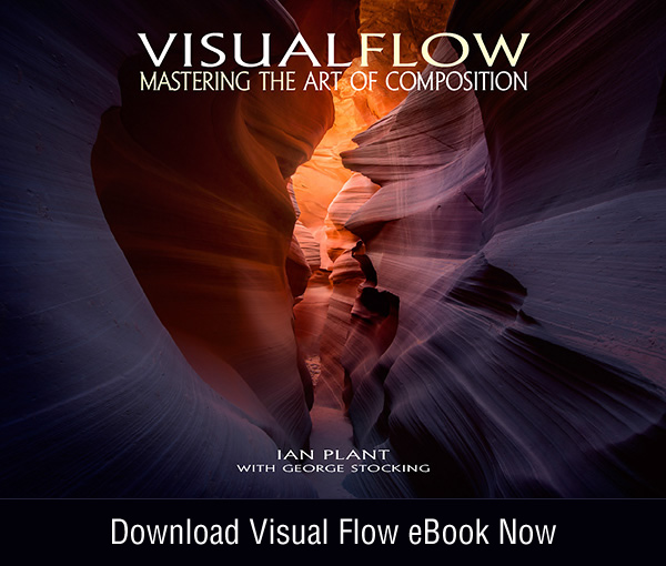 Visual Flow