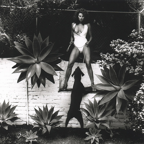 An Interview with Helmut Newton by ASX