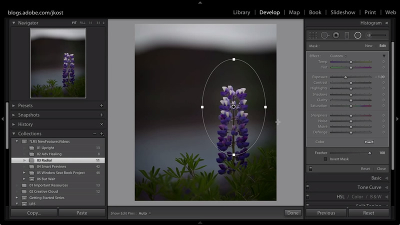 Lightroom Tutorials for Beginners: How to use Radial Filter