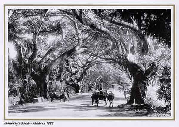 Mowbray's Road - Madras (Chennai) - 1885