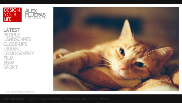 5 Simple Usability Tips to Grow Your Photo Website Traffic