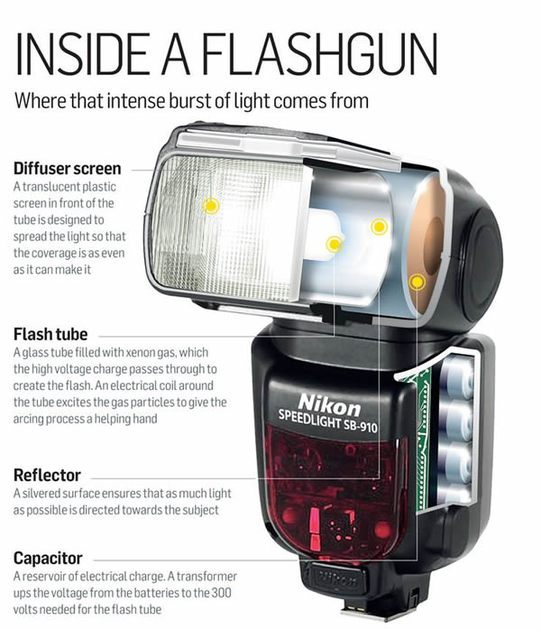 Inside A Flash Gun