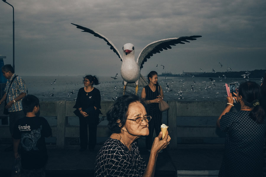 A giant seagull - Street Photography and the art of composition photos