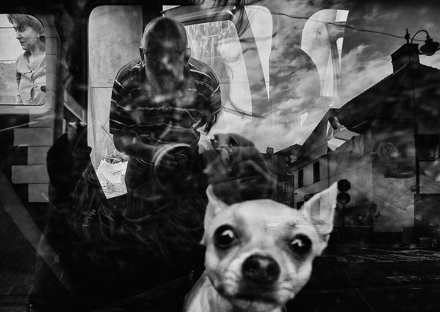Street Photography & The Art of Composition – Majestic Photographs