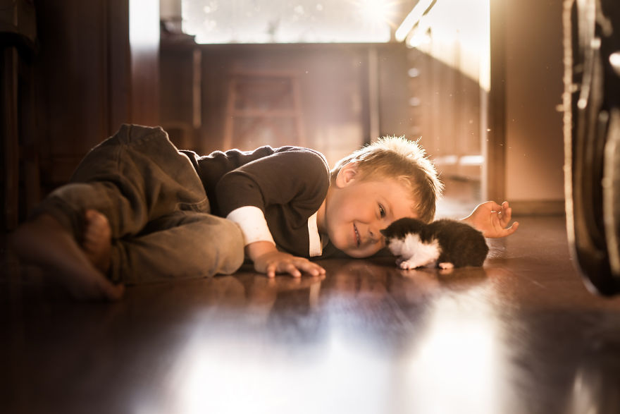 Photographer Iwona Podlasińska Captured The Most Magical Moments of His Son With Cats