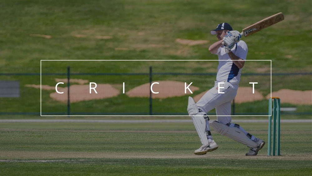 Highlights of Cricket Photography – Bonus: Free Online Cricket Games