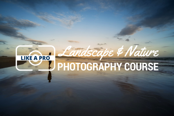 Landscape and Nature Photography Course