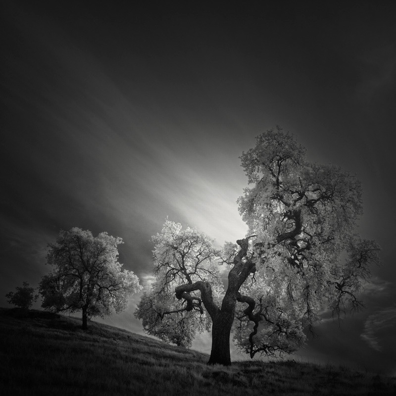 Infrared Silence: Stunning Fine Art Landscapes By Nathan Wirth