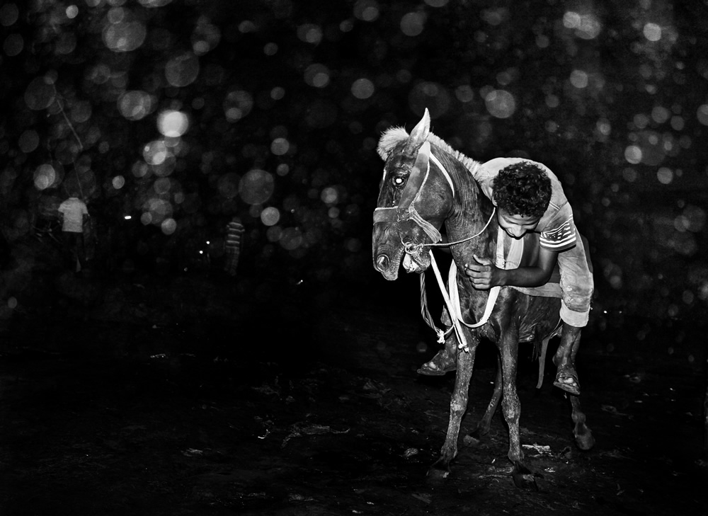 A Friend with No Name: Photo Series By Nayeem Siddiquee