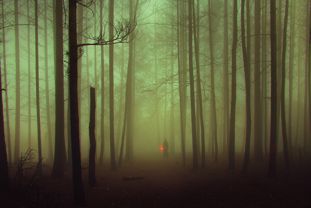 Warm Lights in Cold Places by Henri Prestes+