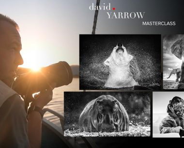 Join Master Class with David Yarrow: Inspiring Interview