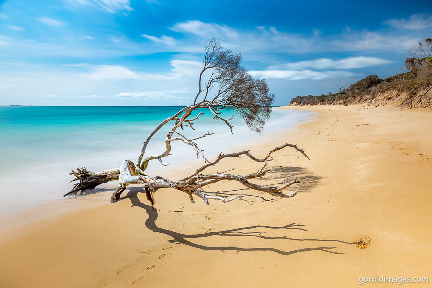 Point Nepean - National Parks In Victoria
