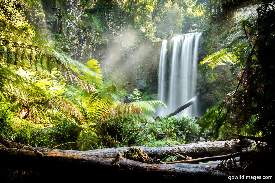 Great Otway - National Parks In Victoria