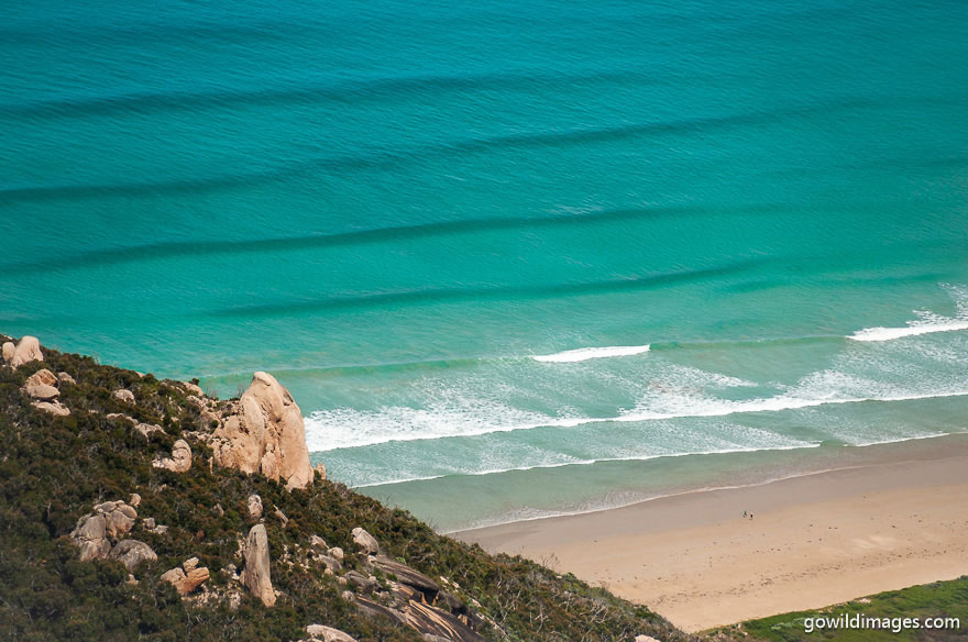Wilsons Promontory - National Parks In Victoria
