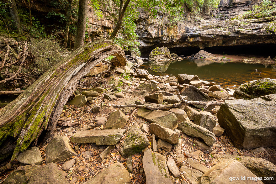 Mitchell River - National Parks In Victoria