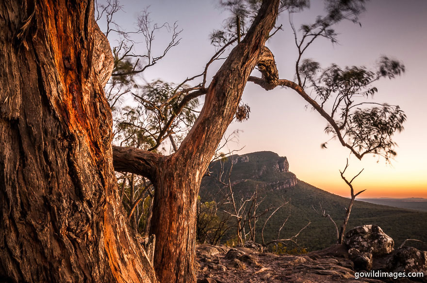 Grampians - National Parks In Victoria