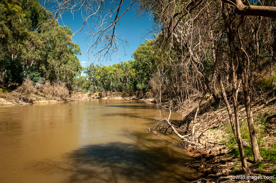 Lower Goulburn - National Parks In Victoria