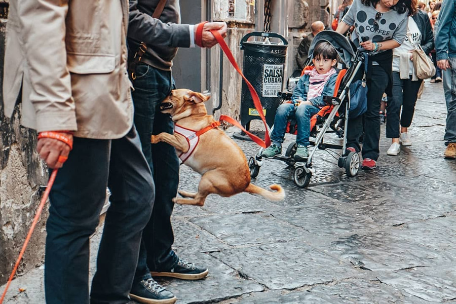 Street Photography & The Art of Composition – 30 Majestic Photographs (Part 15)