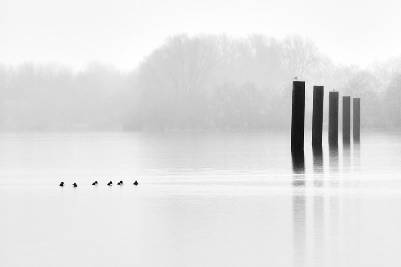 Winners of Black and White Minimalist Photography Prize 2021