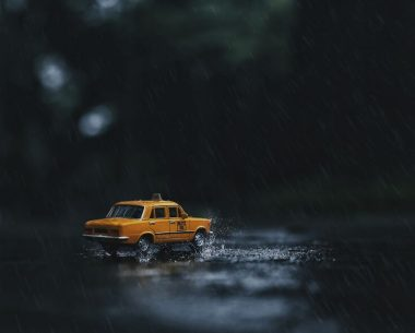 Blending Nature With Miniature By Anindo Rudro