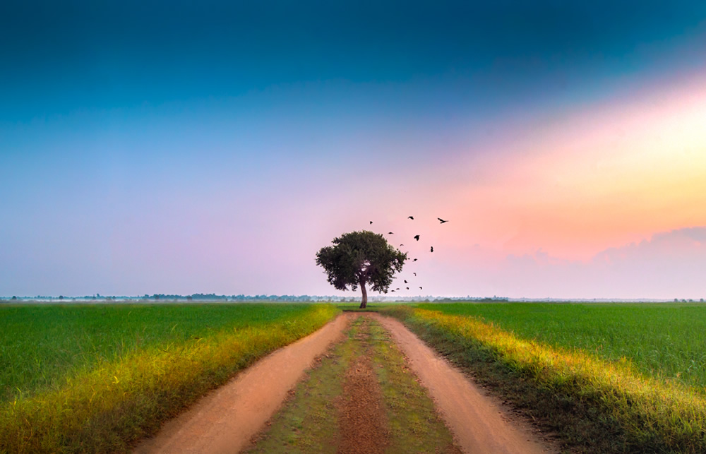 Interview With Landscape Photographer Suthananth Ketheeswaranathan