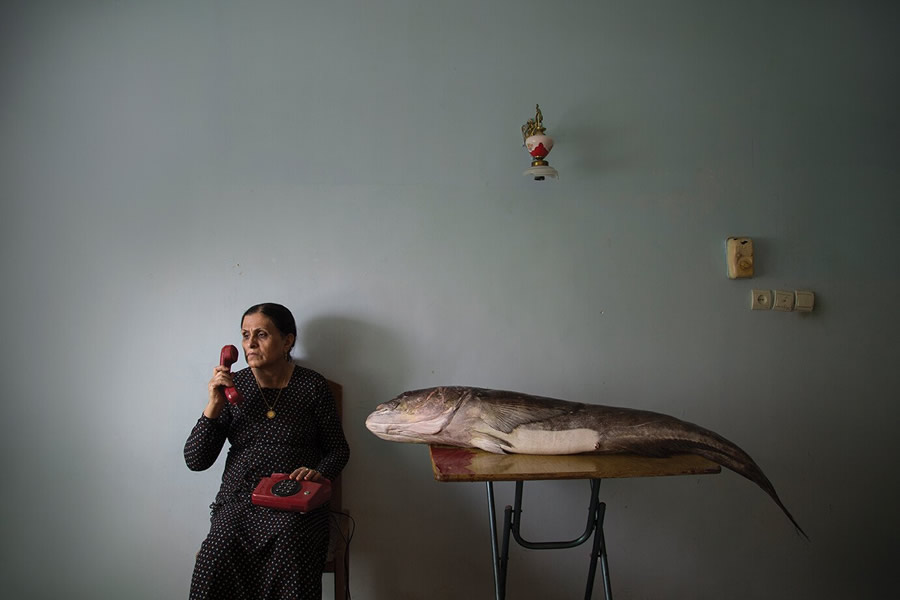 Winning Photos Of Wellcome Photography Prize 2021
