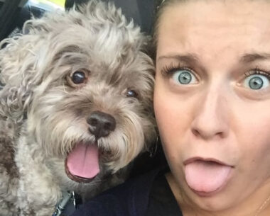 26 Animals Who Don't Want To Take Selfies But Still Look Very Cute And Funny