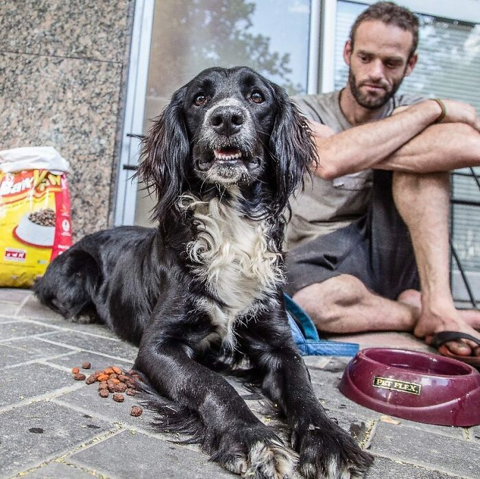 The Lives Of Homeless People And Their Dogs: 30 Touching Photographs From MRSC IG Page