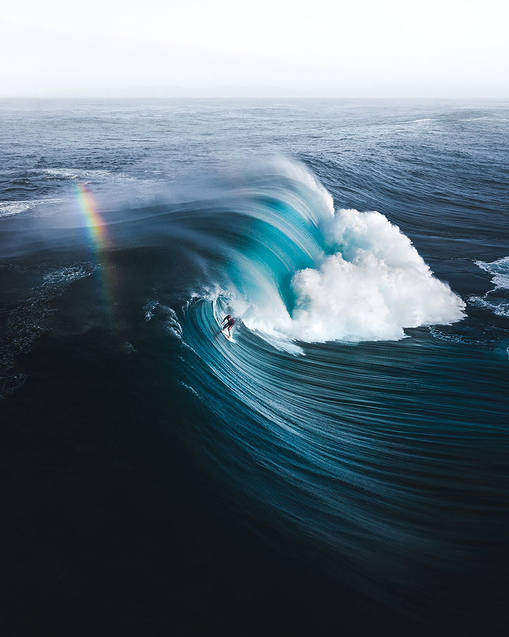 The Ocean Photography Awards 2021 Finalists