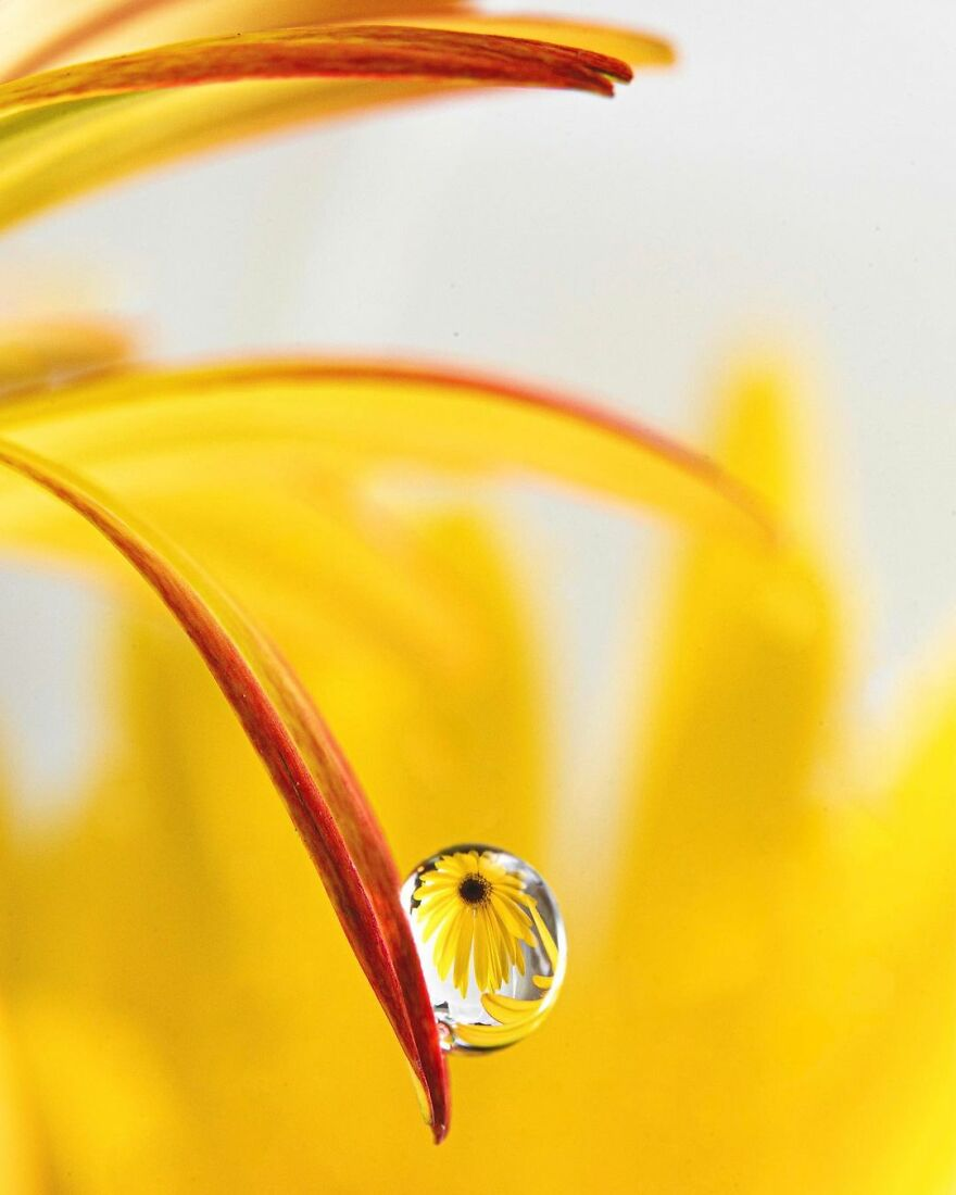 Water Droplet Techniques by Amthel Al-Dayni