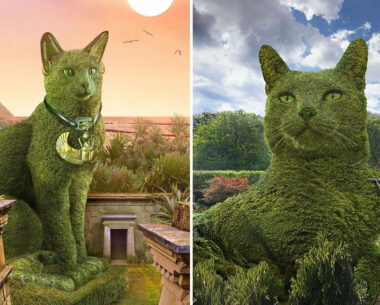 75-Year-Old Artist Richard Saunders Creates Edits Of Bushes In Honor Of His Deceased Cat