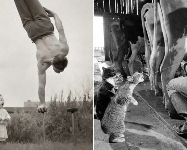 30 Pics Taken 50-100 Years Ago Showing Just How Much Things Changed Over Time